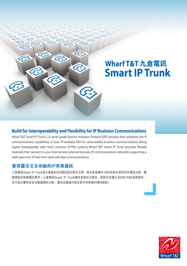 Leaflet_Smart_IPTrunk (2)-1