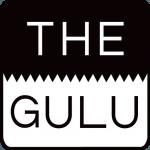 Case Study: The GULU – Matrix IP PHONE 方案