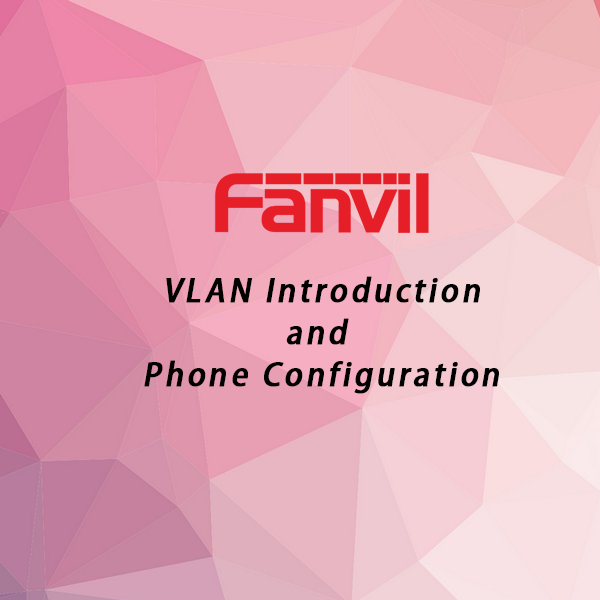 VLAN Introduction and Fanvil Phone Configuration